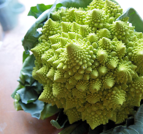 Fractal Fun! The Christmas Tree Vegetable