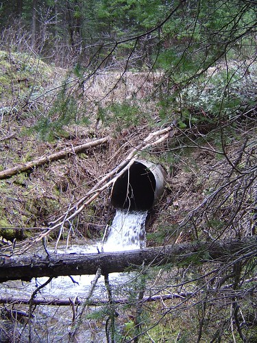 Culvert before