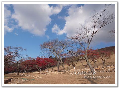 奈良_若草山