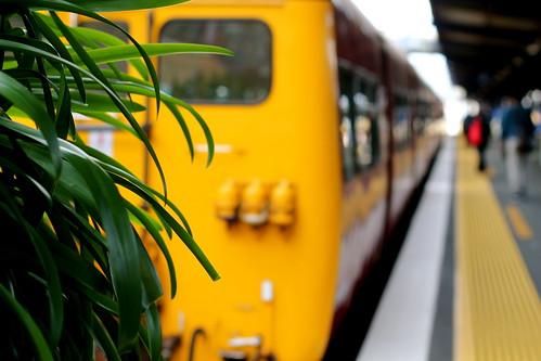 Friday: my train