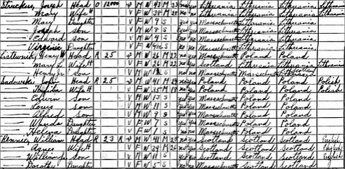 1930 Census Snippet