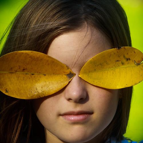 leaf glasses by Matt Hovey