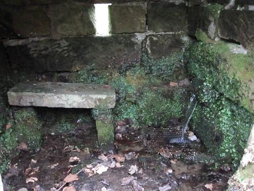 Waterhouse Well, Rosedale Abbey