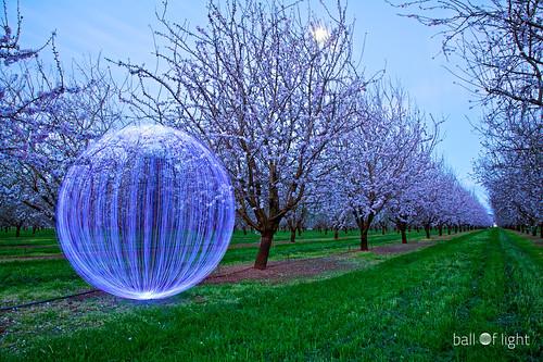 Ball of Light - Hide and Seek