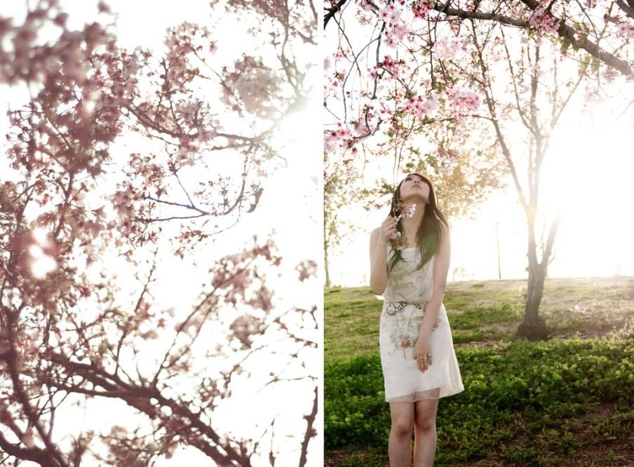 The girl under cherry tree