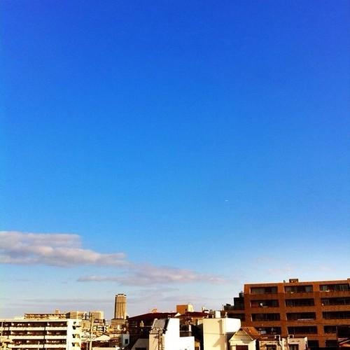 (^o^)ノ < おはよー! 今日も大阪いい天気だ!お出かけ日よりだよ~!