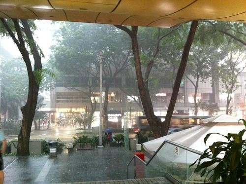 外はすごい雨なんですが!傘がこれは意味がない。