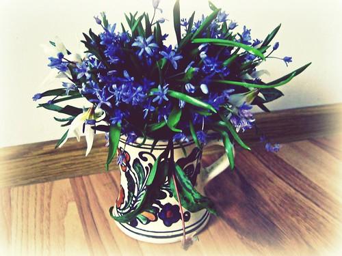 De Florii, flori pentru flori