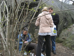 Finding a cache