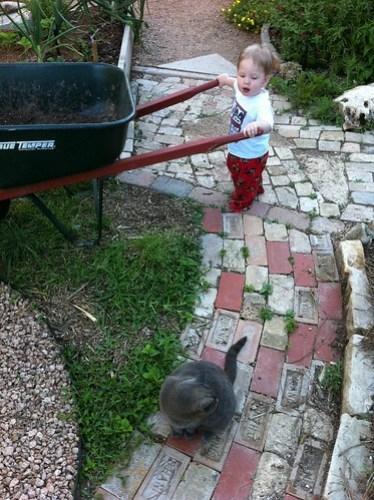 Daddy's Garden Helper