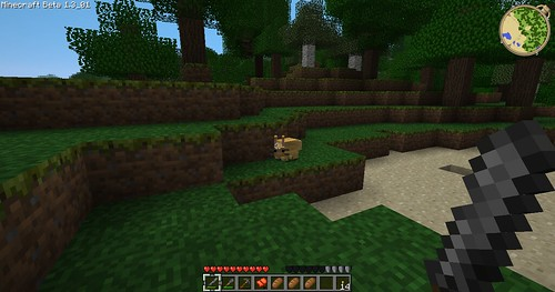 Minecraft - Aww a Rabbit!