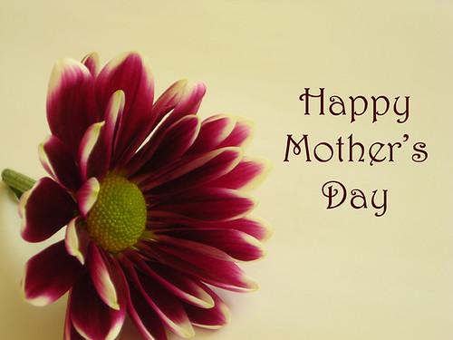 Mothering Sunday {026/365} - Wishes