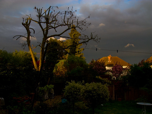 A neighbour's house at sunset, from my back garden