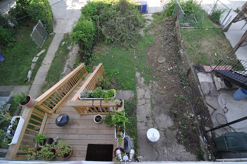 Backyard from above