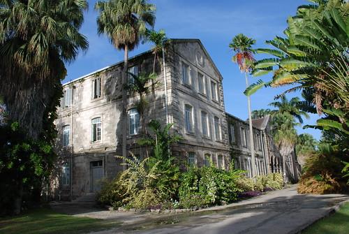 Codrington College, Barbados, thinking insomniac, vernelle noel