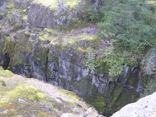 WA  Mt.Rainer 52