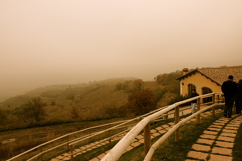 Hills in Soave