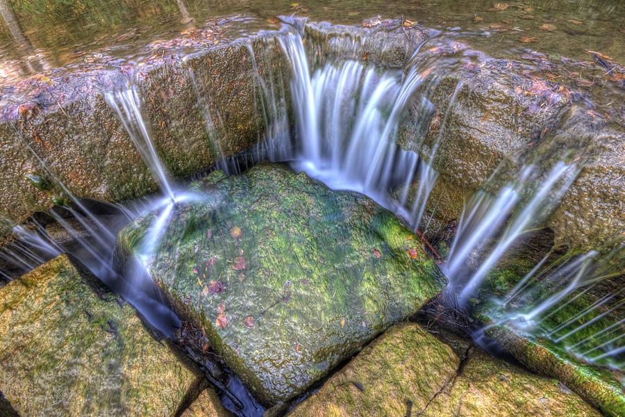 Moss under the Falls
