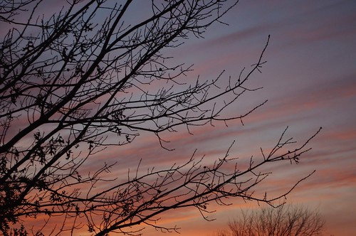 01.07.2011 Winter Sky