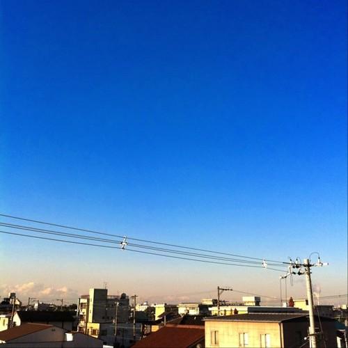 (^o^)ノ < おはよー! 今日の大阪、良い天気ですよ。