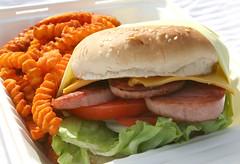Spam Burger
