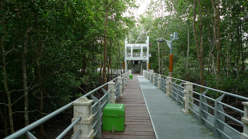 Taman Paya Bakau - 15