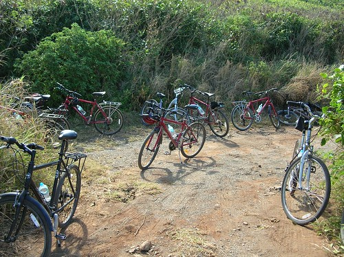 Virgin Island bike park
