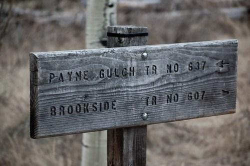 Hiking Payne Gulch