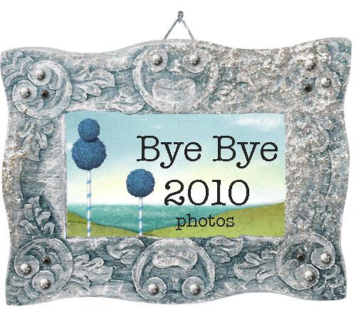 Bye2010Photos