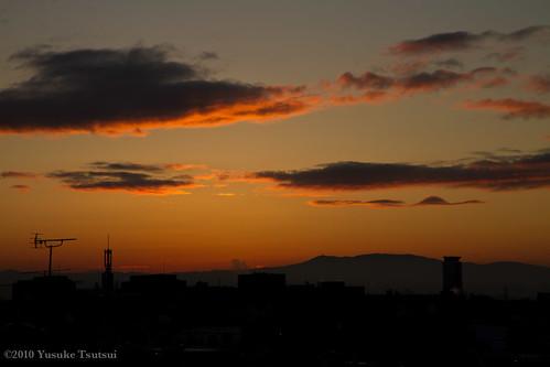 冬の夜明け 1