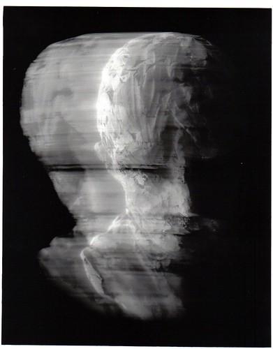 Shelley Wilson image