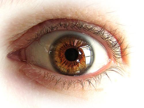 Bam! week 5 - Brown-eyed girl