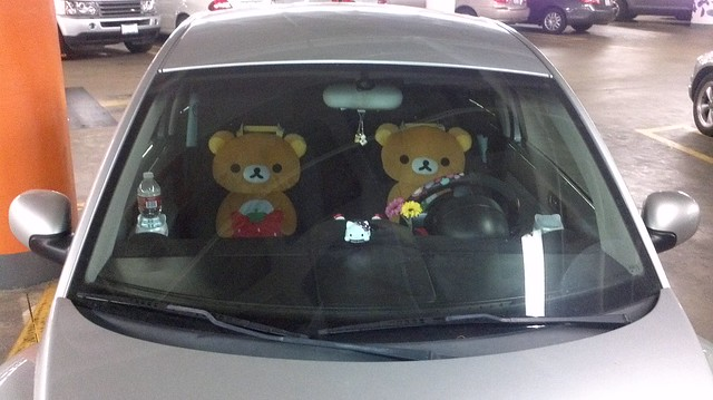 Bears driving a car