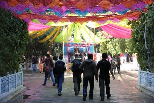 Enter the festival
