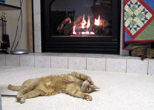 Napping by the Fireplace 2