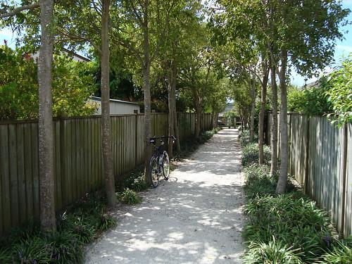 Wainoni Park Path
