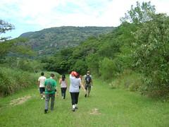 Fazenda Ipanema