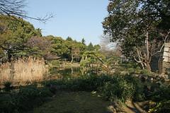 日比谷公園(心字池)