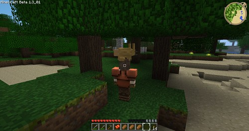 Minecraft - Rabbit Hat