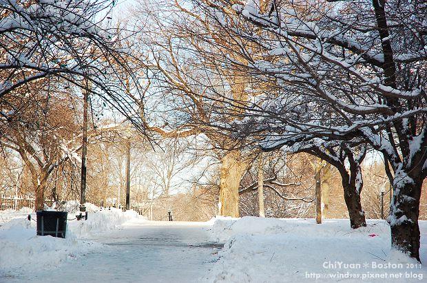 Boston Common波士頓公園14.JPG