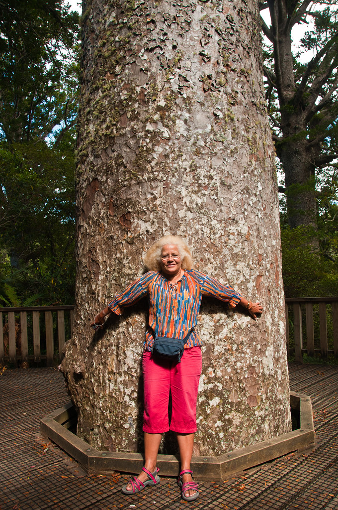 Chris and a kauri tree