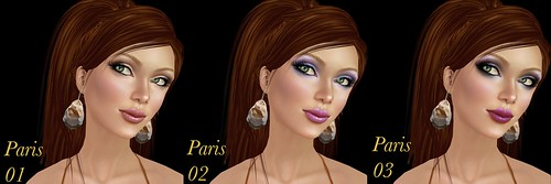 Chaisuki Paris makeups 1-3