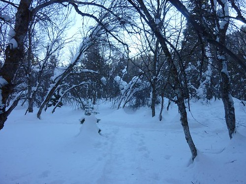 Sundance Snowshoeing 5 - Scenery