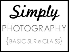Simply Photography blog button ad