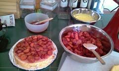cake in progress 1