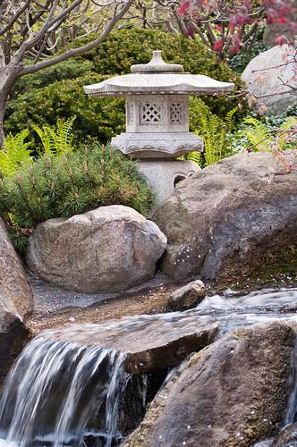 Anderson Gardens 05_06_11