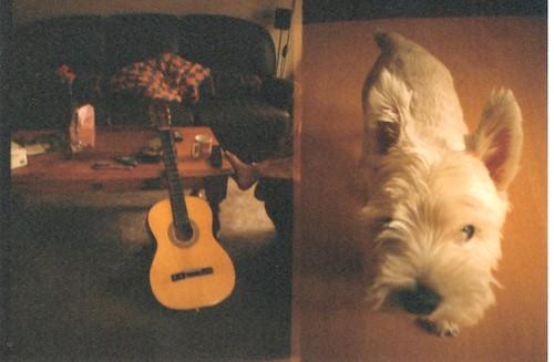 guitar & bear