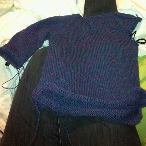 Kitten's sweater