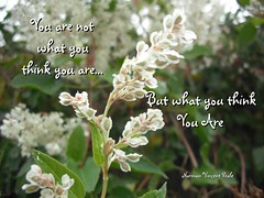 You are not what you think you are...But what ...