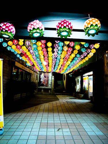 light festival